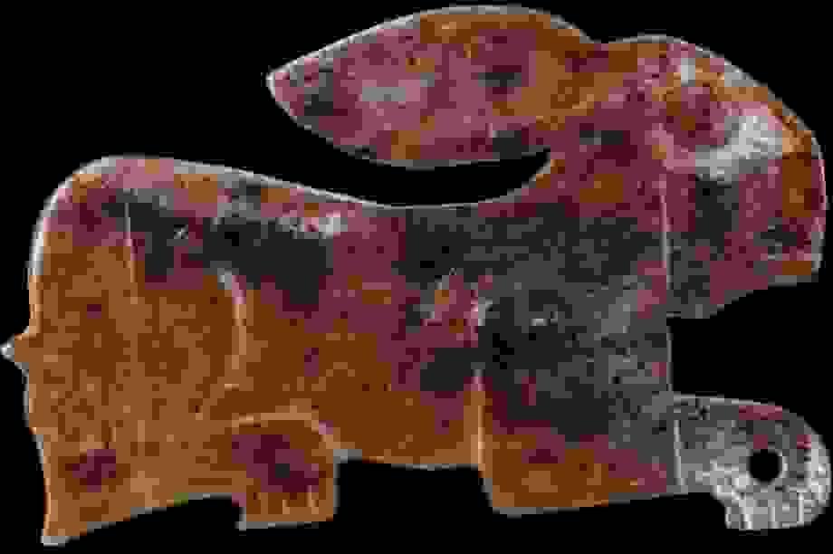 Người Trung Quốc cổ đại đã nuôi thỏ làm thú cưng từ 5.000 năm trước