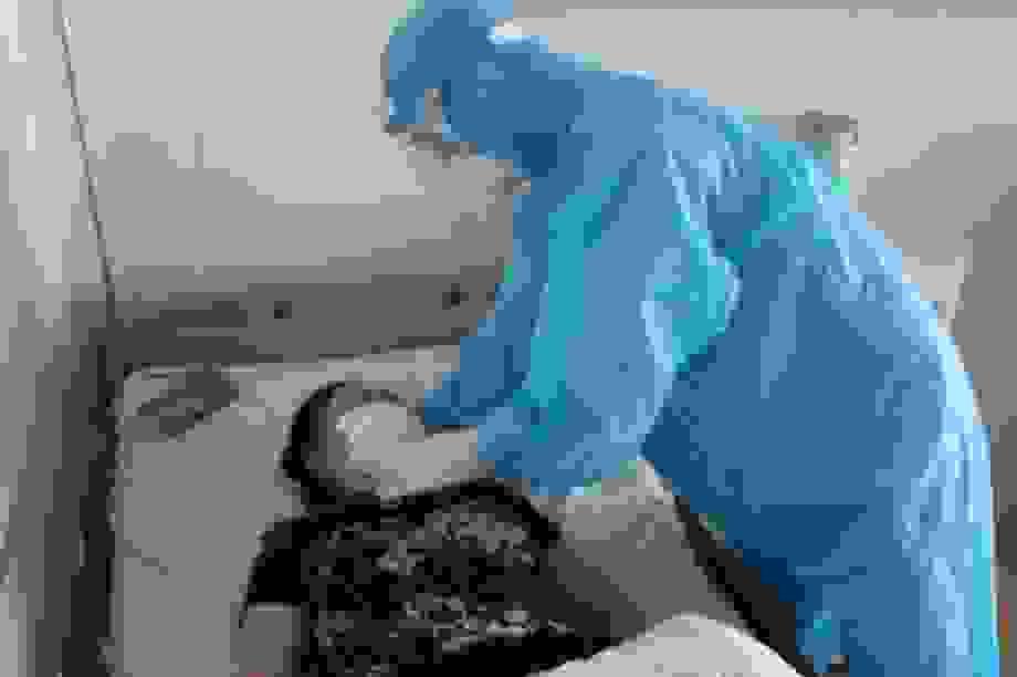 Chiều 14/5: Không ca mắc mới Covid-19, Việt Nam chữa khỏi 90% ca bệnh