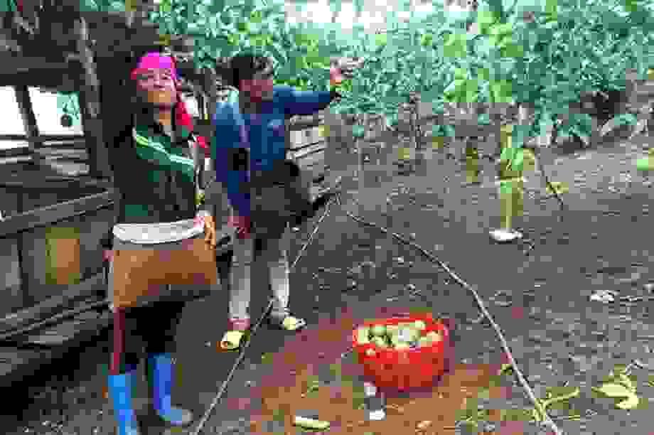 Gần 27.000 lao động ở Sơn La ra tỉnh ngoài làm thuê