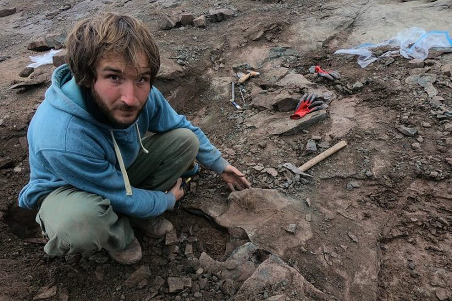 Phát hiện xương của khủng long khổng lồ Megaraptor