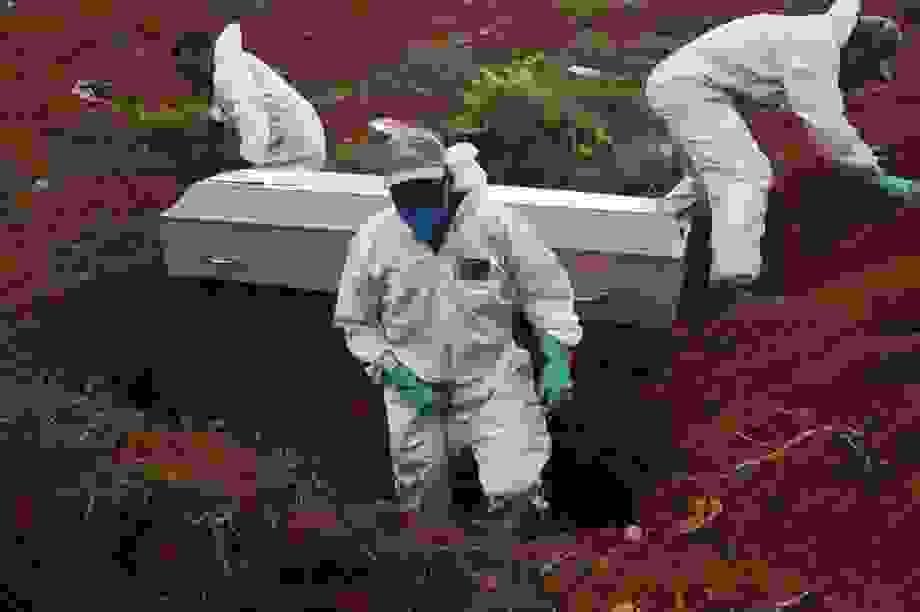 Brazil trở thành tâm dịch Covid-19 lớn thứ hai thế giới