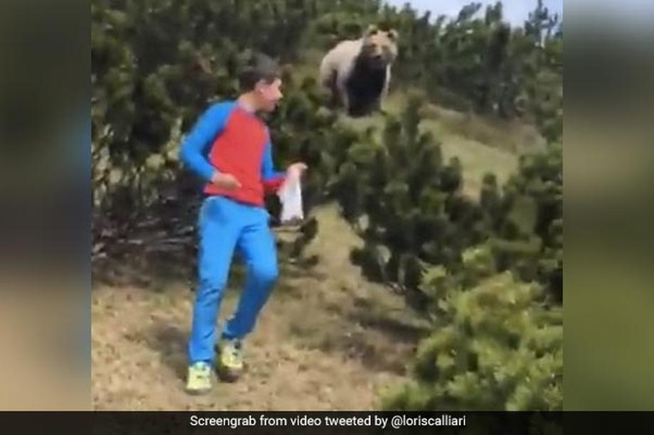 Thót tim xem cậu bé mưu trí thoát khỏi con gấu lớn