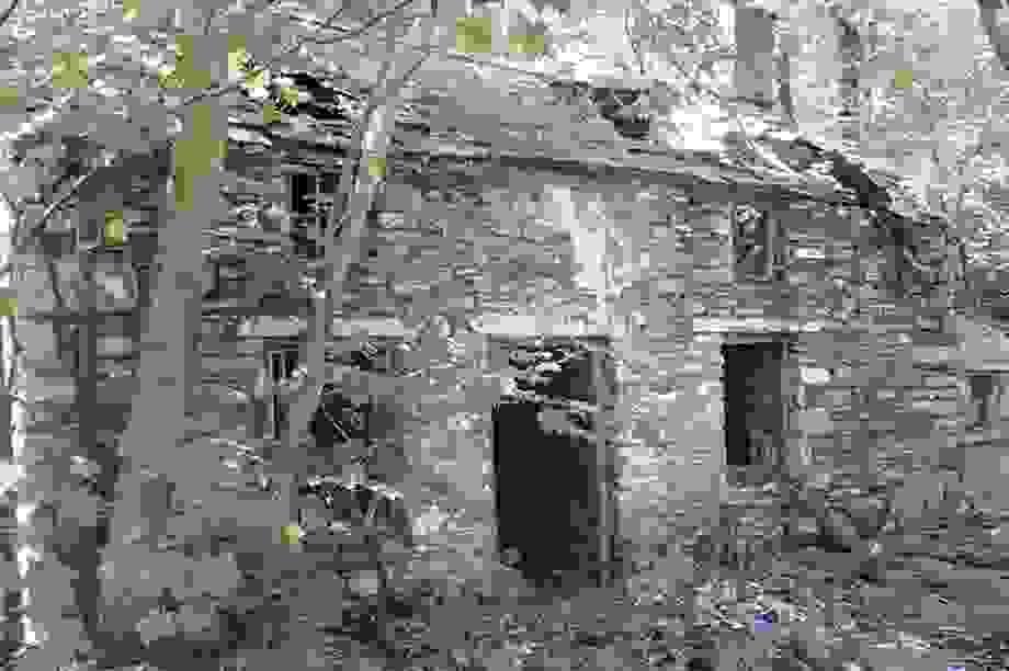 Mua nhà cũ tồi tàn, người phụ nữ không ngờ 20 năm sau tăng giá hơn 7000 lần