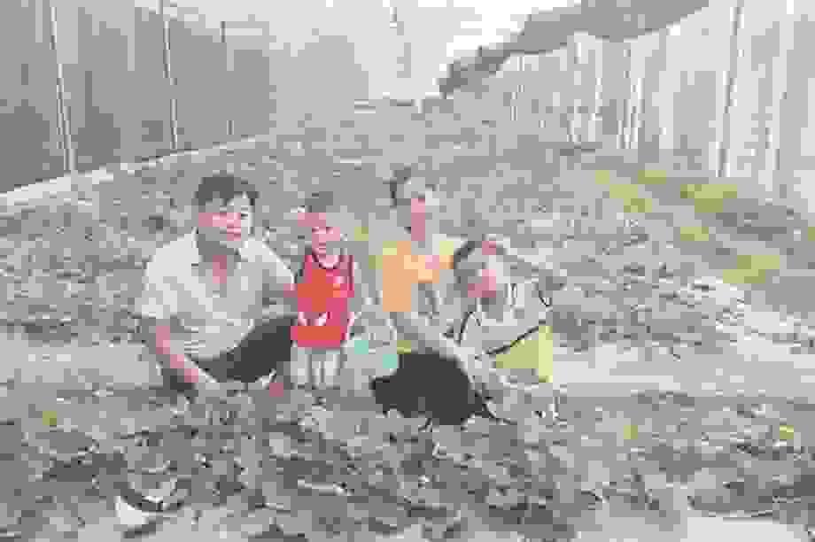 Nghỉ việc ở ngân hàng, chàng trai Hà Giang thành công từ hoa hồng