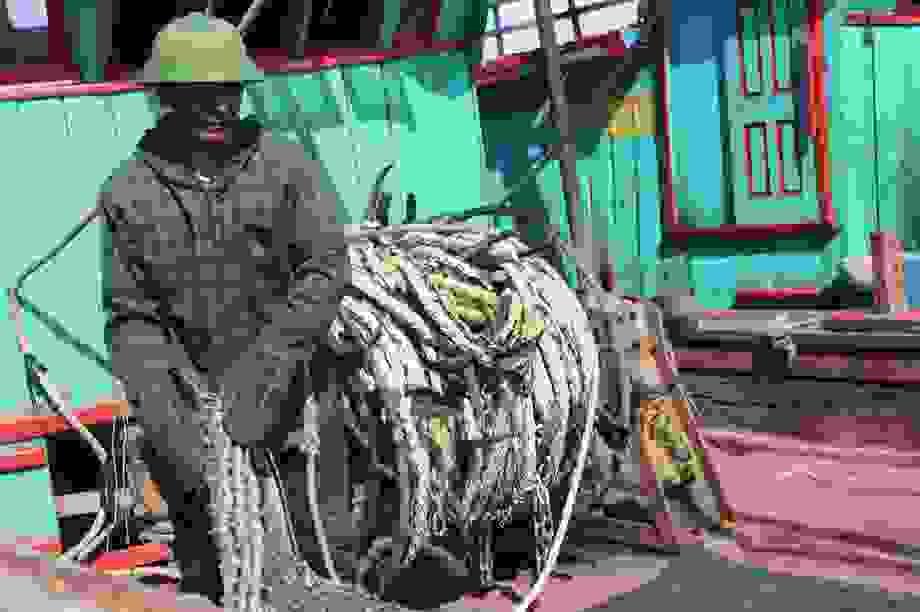 """Chê cảng cá kém hiệu quả, ngư dân """"trốn"""" nộp phí?"""