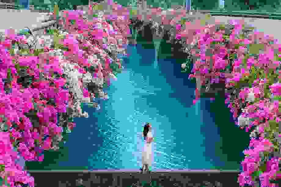"""Phát """"sốt"""" với những con đường hoa đẹp như trời Tây ngay gần Hà Nội"""
