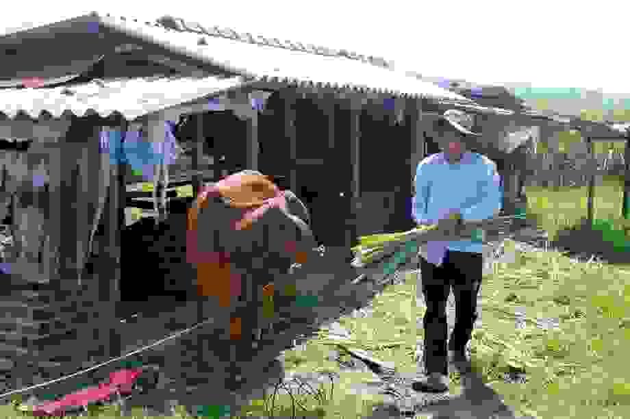 Phú Yên: Cần ưu tiên dạy nghề và tạo việc làm cho lao động ở địa bàn nghèo