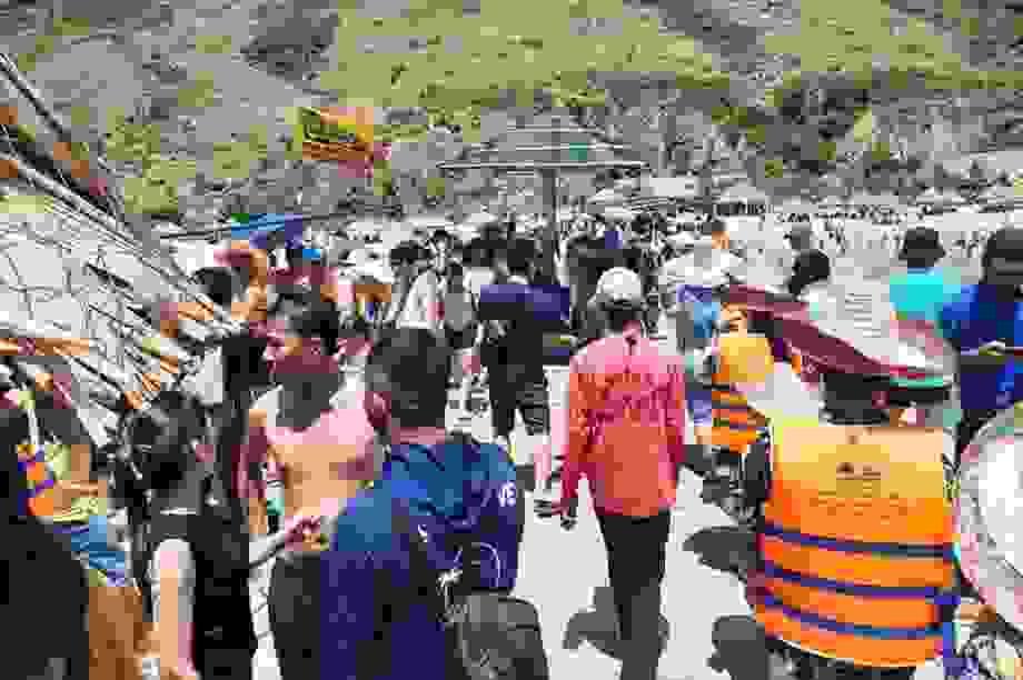Lặn biển, ngắm san hô - điểm đến hút khách của du lịch ở Bình Định