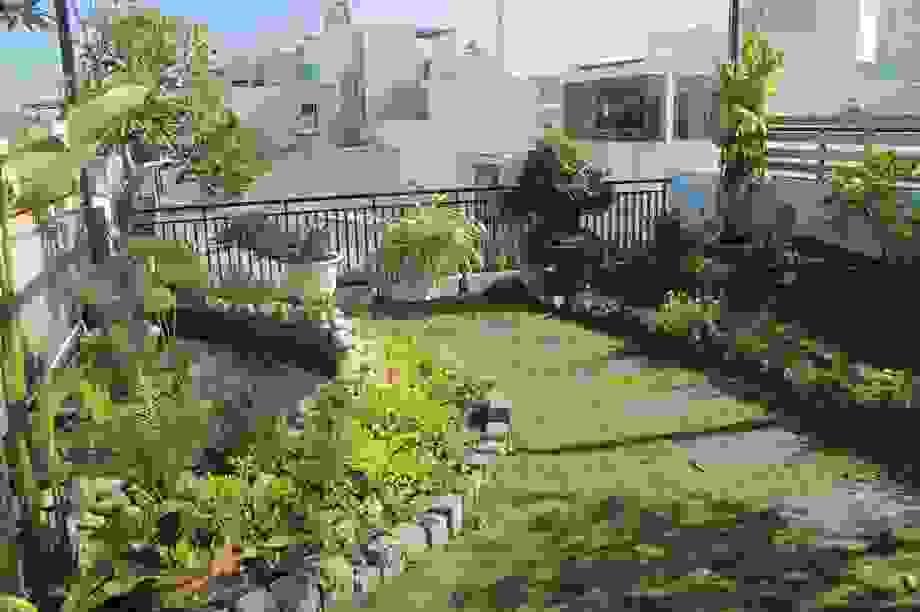 """Ông bố 2 con ở Đà Nẵng """"làm vườn, nuôi cá"""" đẹp mê trên sân thượng nhà phố"""