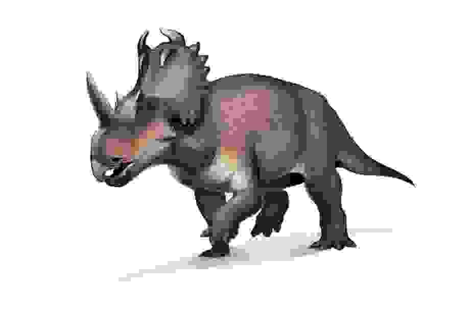 Khủng long từng mắc bệnh… ung thư từ 76 triệu năm trước