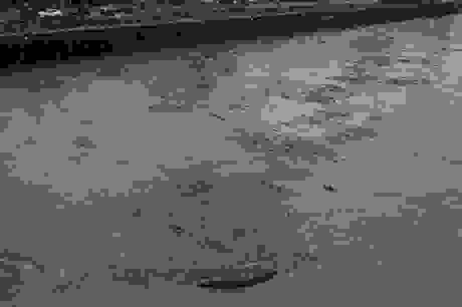 Lũ lớn trên thượng nguồn sông Hồng đang đổ về Lào  Cai