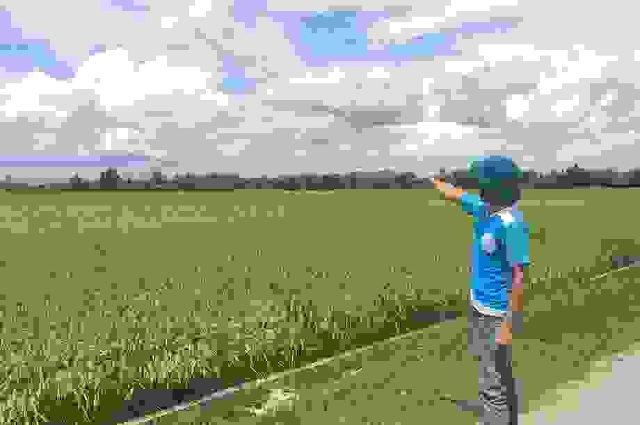 Hàng chục hộ dân bất bình vì đất nông nghiệp bị chiếm dụng tại Quảng Bình