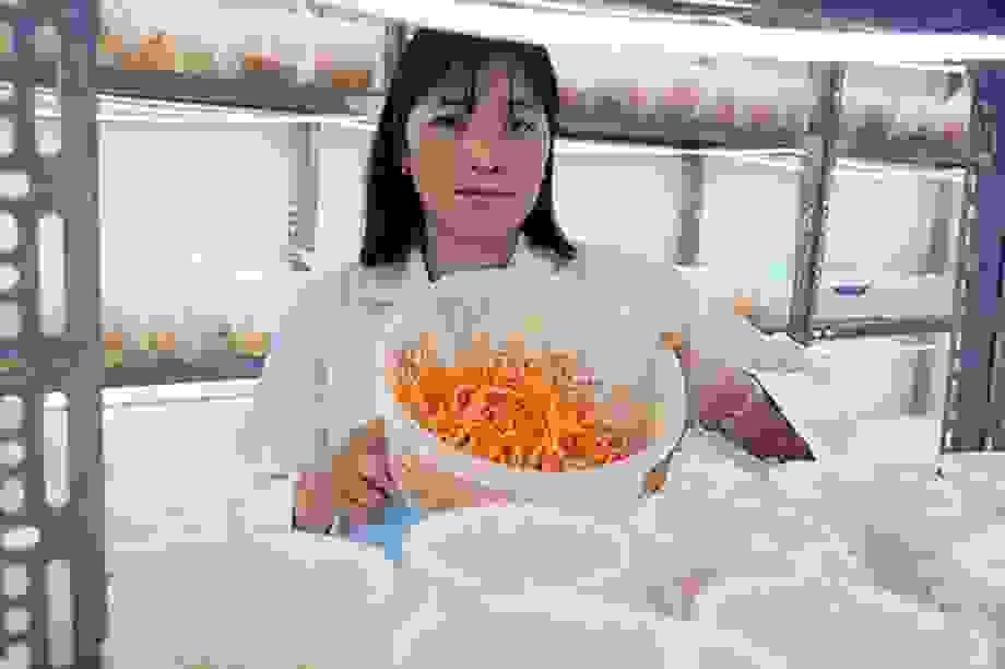Gia Lai: Vợ chồng nông dân mày mò trồng dược liệu đông trùng hạ thảo