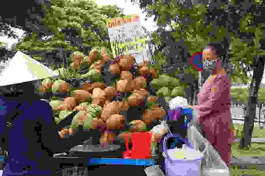 Công nhân bỏ việc đi bán dừa dạokiếm cả triệu đồng/ngày