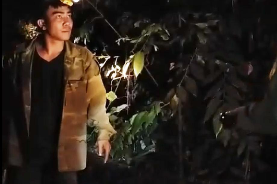 Một đối tượng cầm gậy tấn công lực lượng bảo vệ rừng khi bị phát hiện
