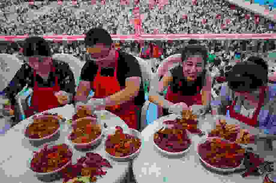 """Ham lợi, nông dân Trung Quốc  trả giá đắt vì """"nhường"""" ruộng cho tôm hùm đất"""