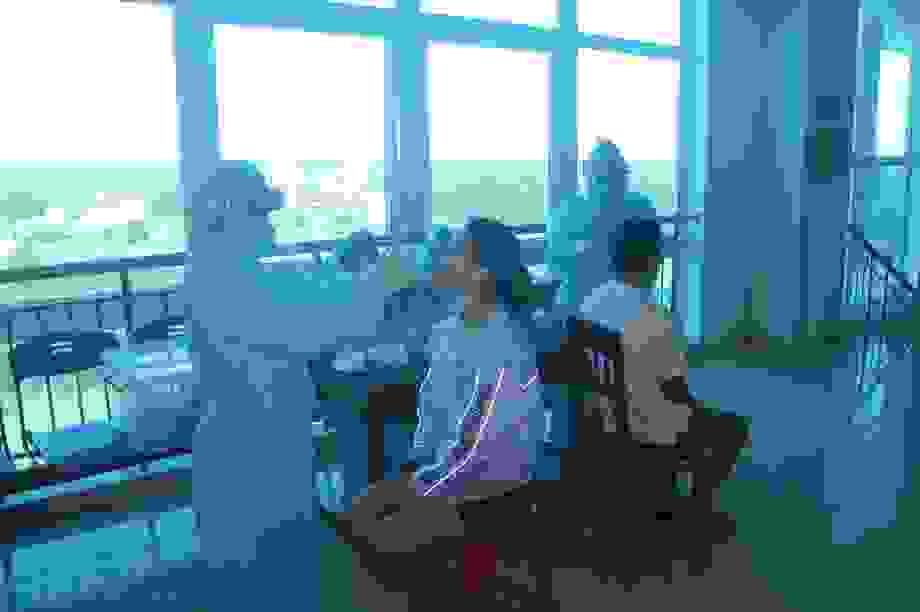 1.600 mẫu xét nghiệm y bác sĩ, bệnh nhân đều âm tính với SARS-CoV-2