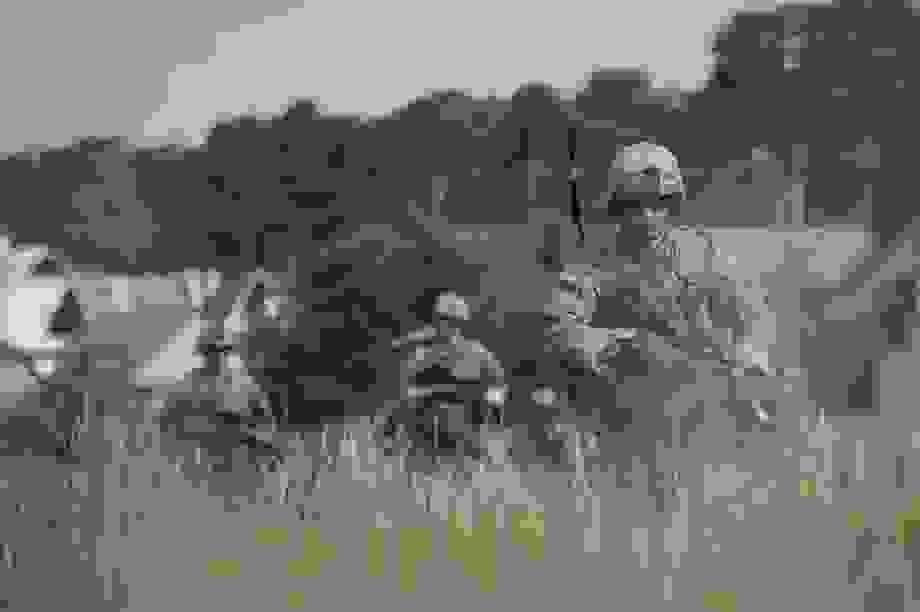 Mỹ lý giải việc đưa quân đến sát biên giới Nga