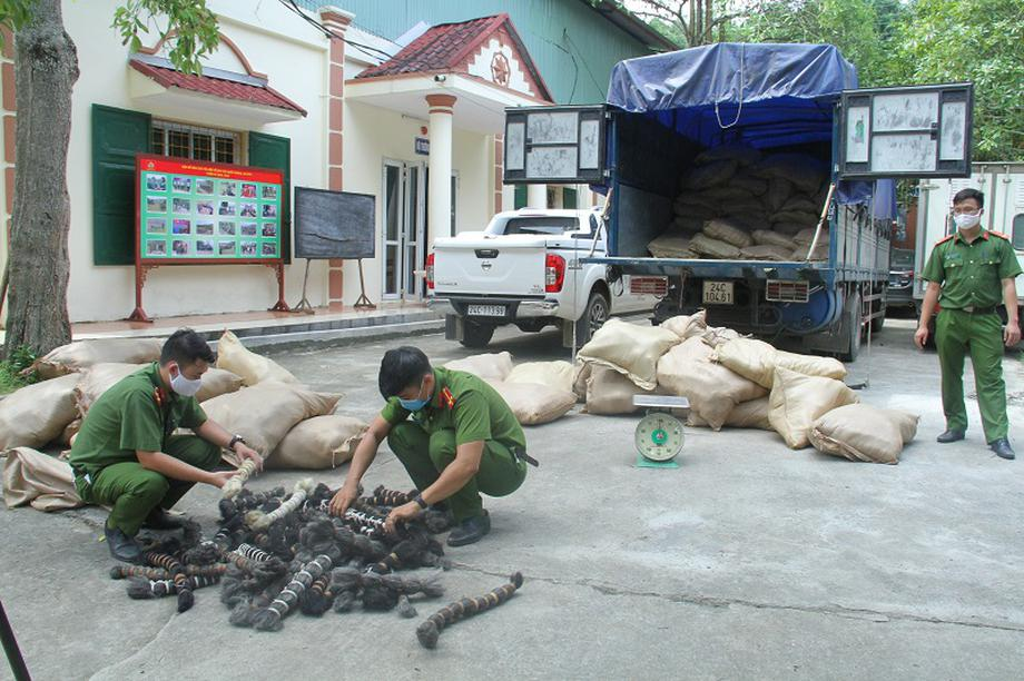 Lào Cai: Bắt quả tang xe tải chở 6 tấn lông động vật tại khu vực biên giới
