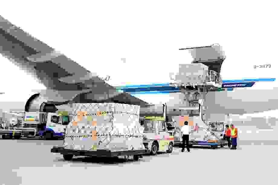 """Hàng loạt doanh nghiệp xuất nhập khẩu, logistics """"kiệt quệ"""" vì Covid-19"""
