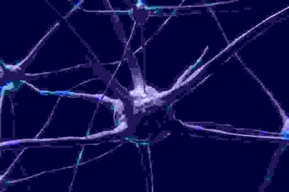 """Mất ngủ mãn tính có thể khiến não bộ """"tự ăn chính mình""""?"""