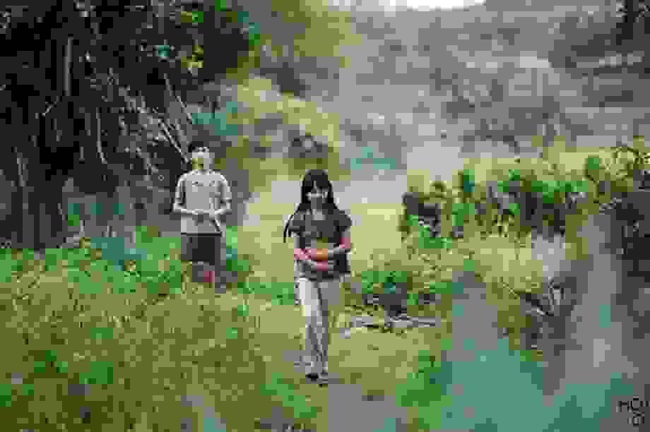 """Phim Việt mất bản sắc, thiếu dấu ấn vì """"khủng hoảng"""" kịch bản?"""