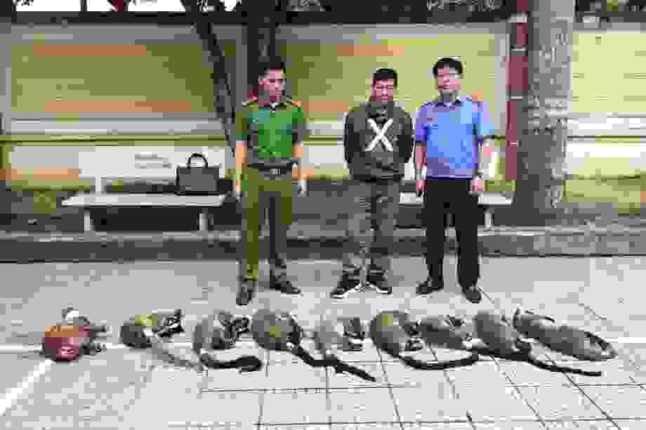 Người đàn ông bị bắt khi mua động vật hoang dã cho đám cưới của con
